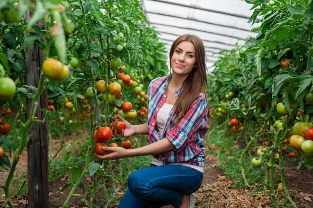 Мережа гіпермаркетів розпочала проєкт підтримки українських підприємців