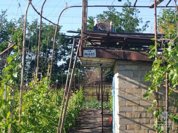 Мужчина грабил дома дачников, пока хозяева работали на огороде