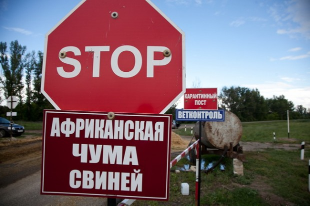 Днепропетровцев предупреждают о мясной опасности