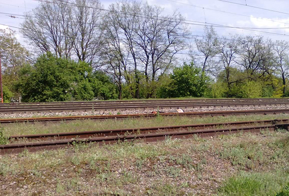 Полиция Днепропетровщины расследует смерть женщин, погибших под колесами поезда