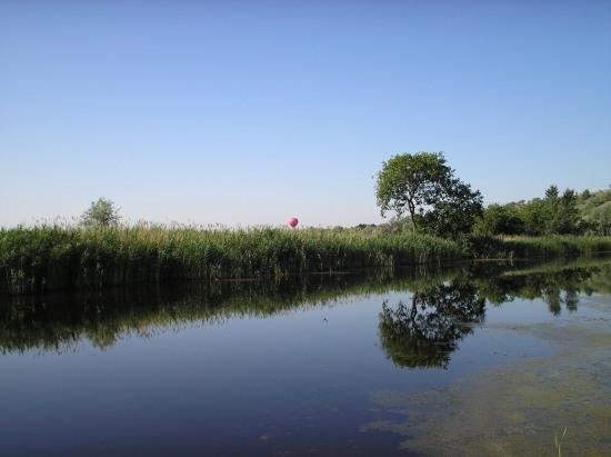 В Подгороднем у местного населения «украли» доступ к речке