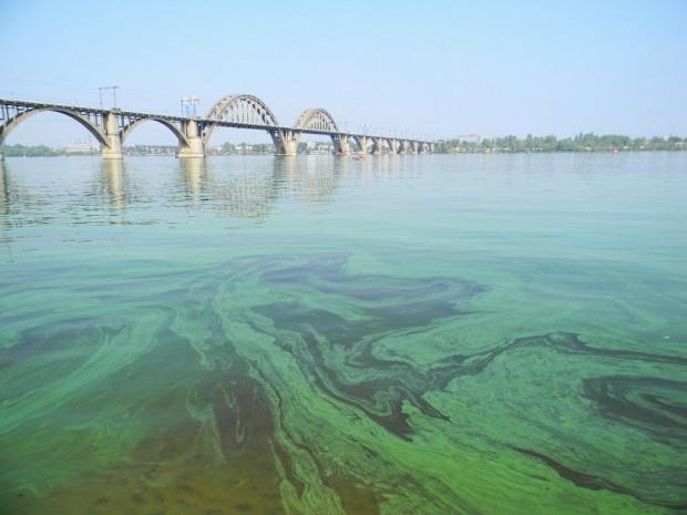 Экологи говорят о гибели Днепра