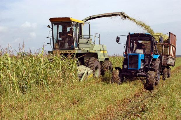 Склады Днепропетровщины  «забиты» сельхозпродукцией