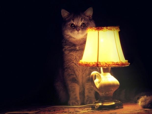 Без электричества оставят жильцов из 6 районов Днепра