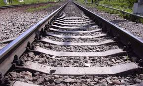 Под Днепром пенсионерка остановила поезд