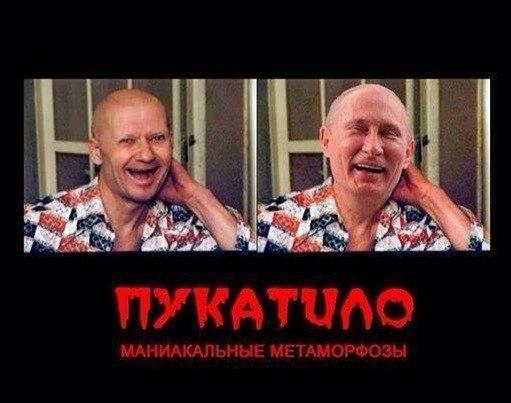 Владимир Голышев: «Все роковые ходы Путин сделал сам. И каждый из них он считал своей победой»
