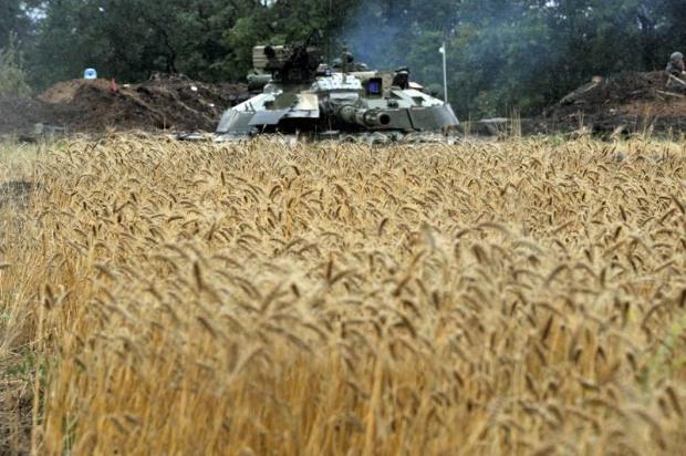 20 гектар военного полигона продали под сельскохозяйственные угодья