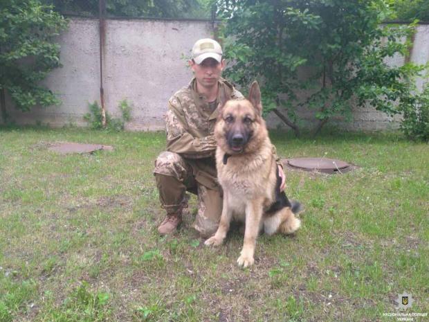 На Днепропетровщине служебный пес спас жизнь престарелой селянке