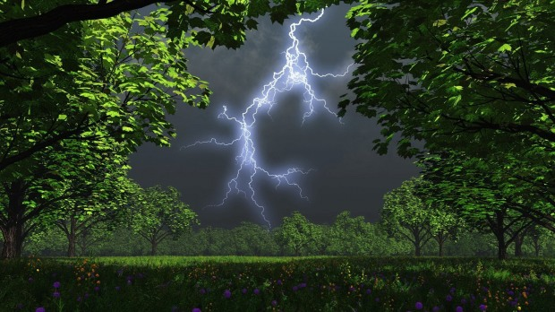 В Днепропетровской области гроза повалила деревья и отключила электричество в селах