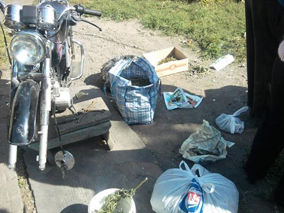 Житель Днепропетровщины хранил у себя три килограмма канабиса