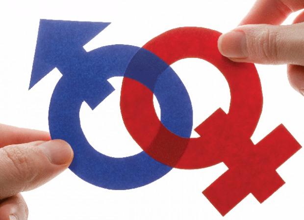 Как в Днепропетровской области будут бороться с притеснениями женщин