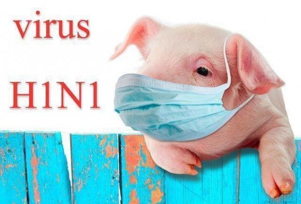 С декабря ожидается вспышка первого штамма гриппа