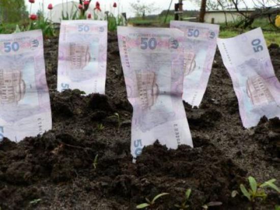 Проект землеустройства парк Шевченко закупил у своих. И дороже?