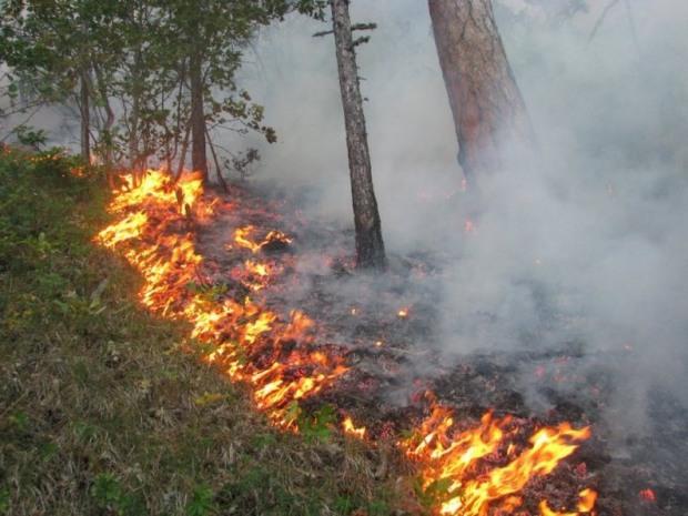 Днепропетровщина является одной из самых пожароопасных областей