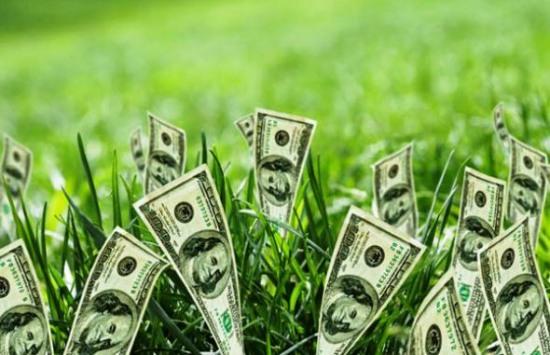 Днепропетровские чиновники «погорели» на незаконном отчуждении земли, стоимостью 2.941.000 грн.