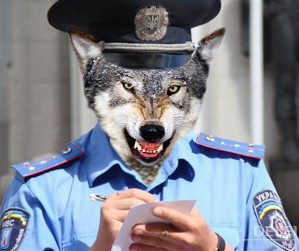 Подполковник полиции вымогал «дань» за стихийную торговлю