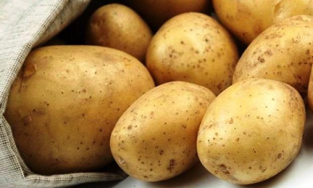 Днепропетровщина завершила собирать картофель