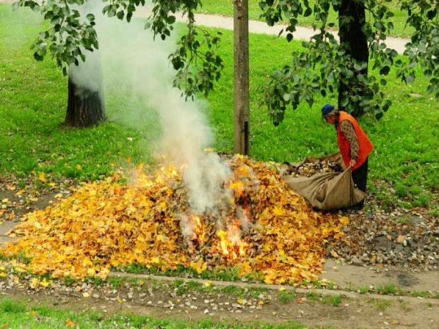 Поджигателей листьев на Днепропетровщине призывают сдавать полиции