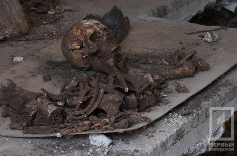 На Криворожском СТО случайно обнаружили останки солдат времён Второй мировой