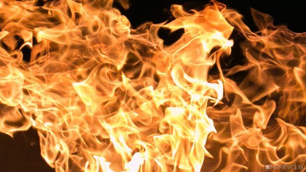 Во время пожара жилого дома спасатели вывели пять человек