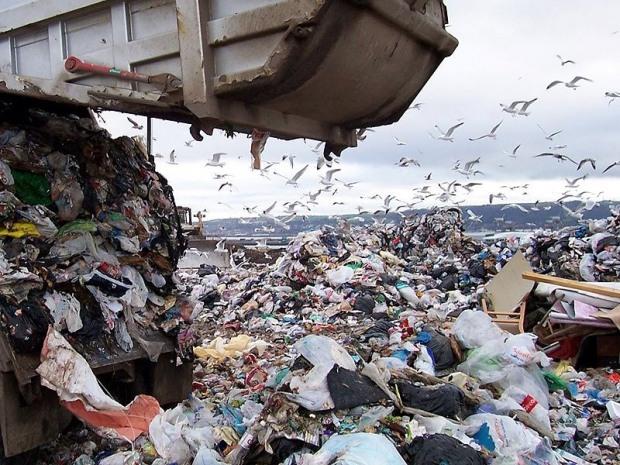 Битву мусоровозов выиграли те, что подороже