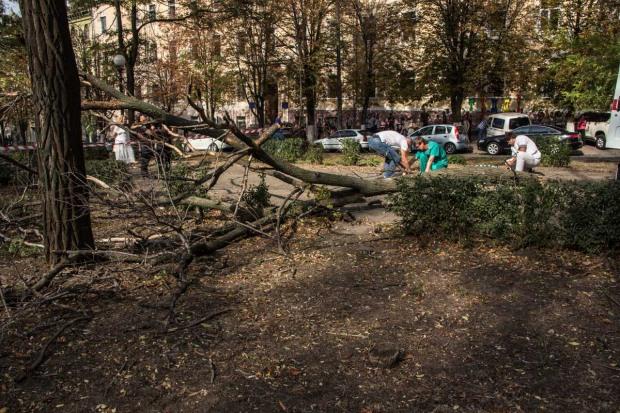 На центральном бульваре в Днепре погибла девушка от сломанной ветки
