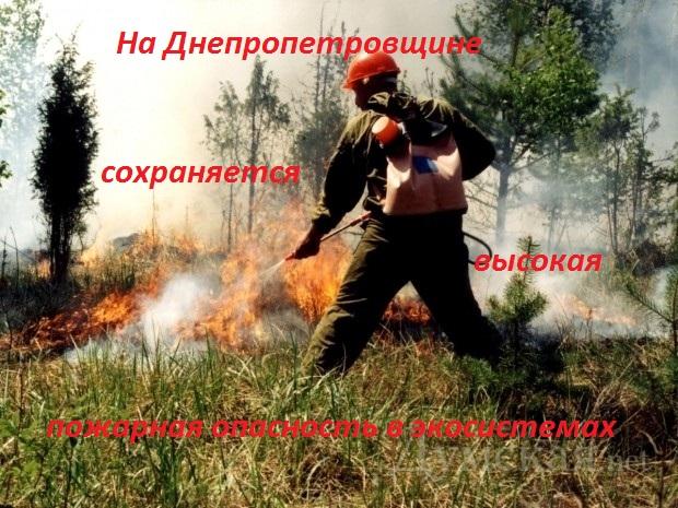 На Днепропетровщине сохраняется высокая пожарная опасность в экосистемах