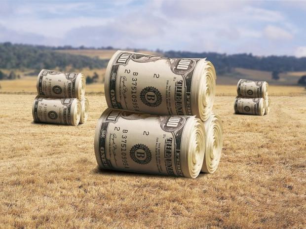 На Днепропетровщине прокуратура судится с фермерами за полмиллиона гривен