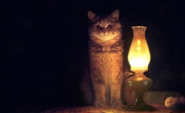 В 5 районах Днепра частично отключат электроэнергию