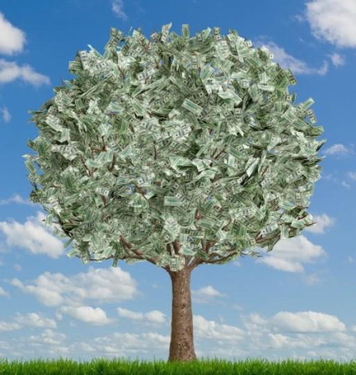 В Днепродзержинске «докосят зелень» за миллион