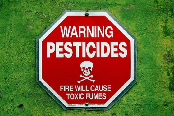 На центральном рынке Днепра рапространяли подпольные пестициды
