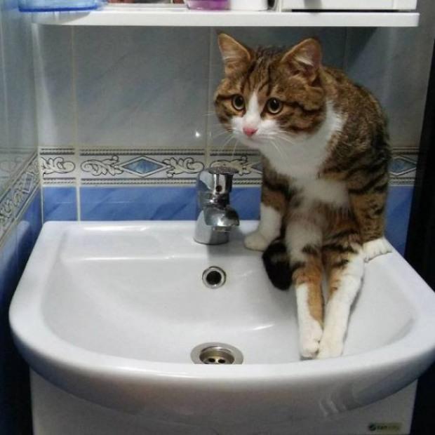 На Березинской во вторник не будет воды