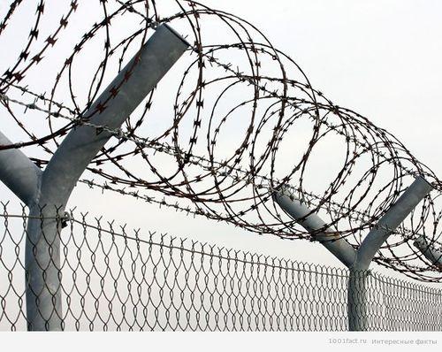 Які невідкладні заходи для запобігання та контролю над поширенням COVID-19 слід запровадити у тюрмах