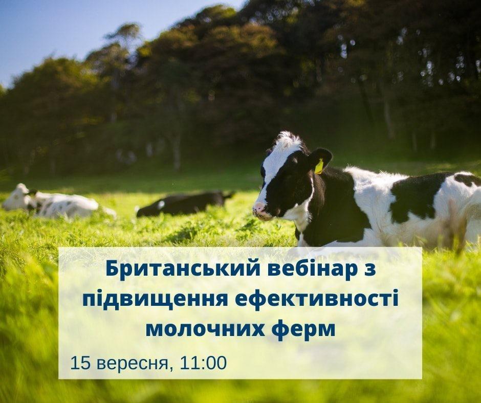 Фермерам розкажуть, як покращити прибутковість молочних ферм