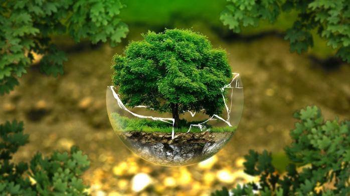 На Дніпропетровщині планується проведення екологічної акції