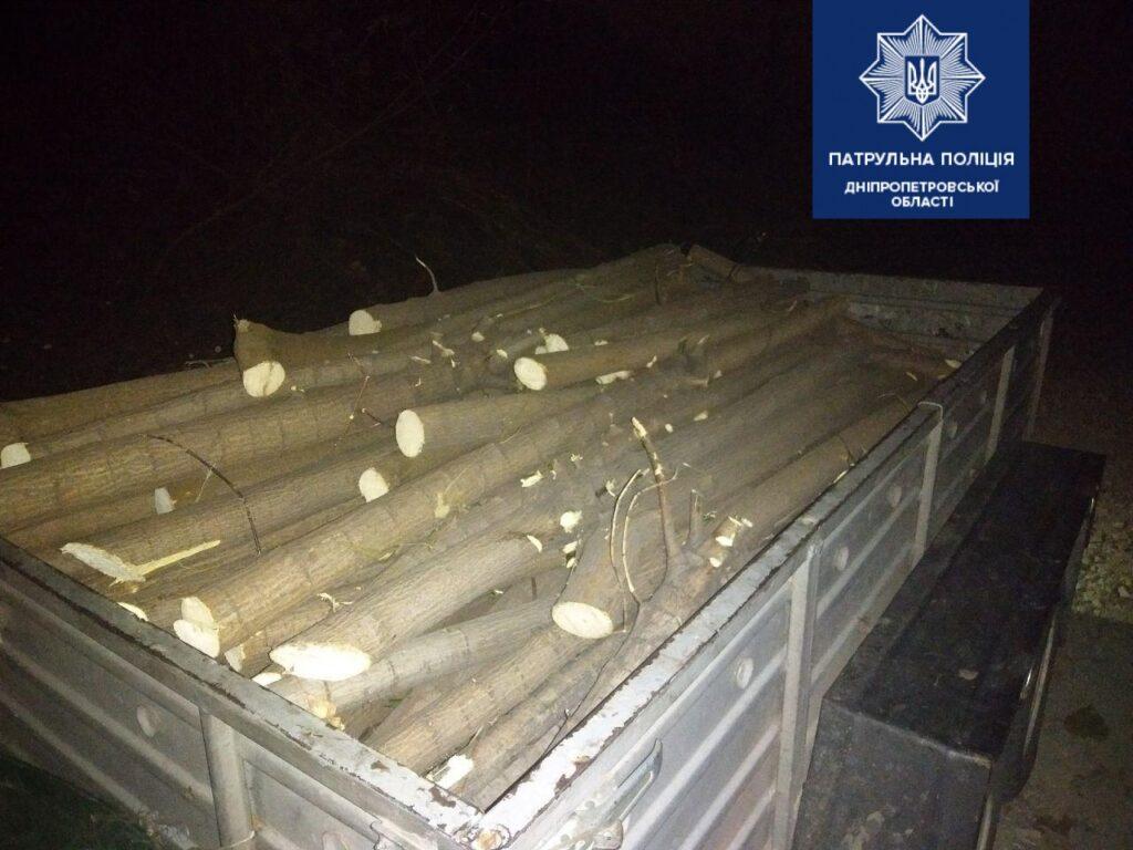 Поліція області припинила незаконну вирубку дерев