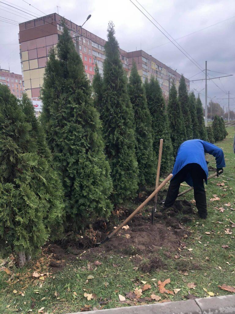 На житловому масиві Лівобережний-3 у Дніпрі за розпорядженням Філатова викопують дерева