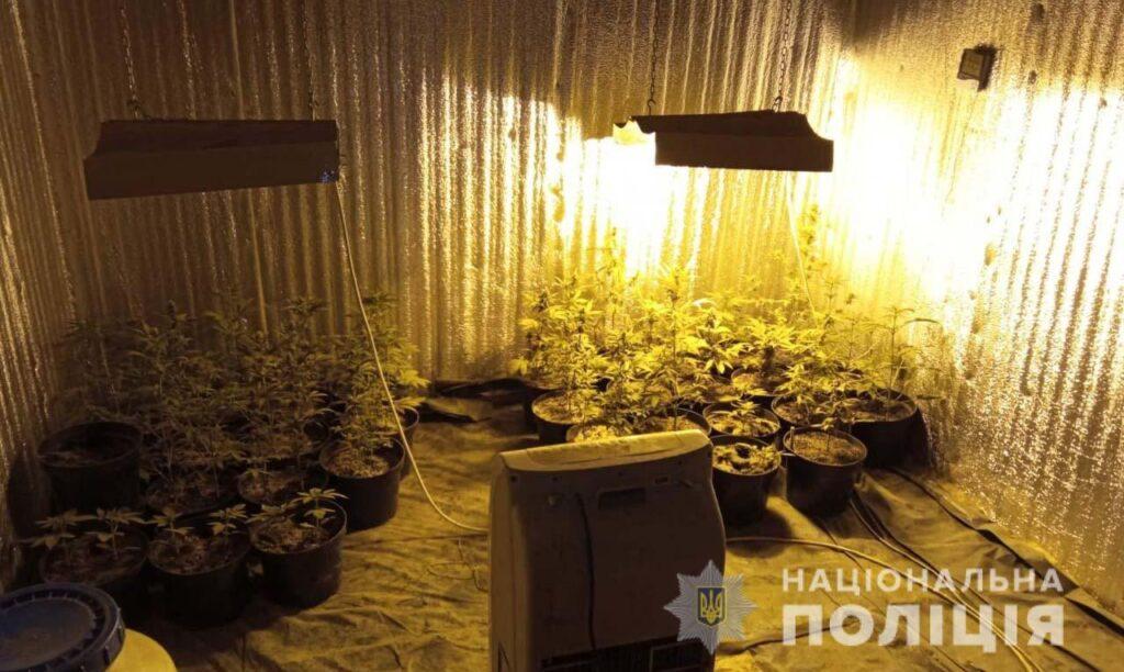 Продавали наркотики: у Синельниківському районі поліцейські затримали злочинне угруповання