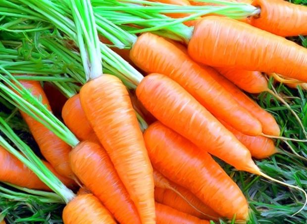 Виробників їжі та агропродукції запрошують до подання заявок на гранти