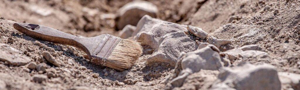 Стародавні ковзани з кісток тварин: під Дніпром археологи знайшли артефакти
