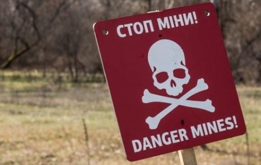 Несподівана знахідка: в селах біля Кривого Рогу знайшли снаряди часів Другої світової війни