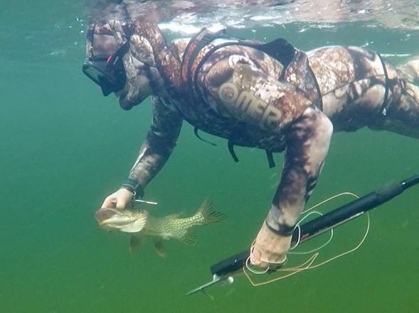 Підводні браконьєри на Дніпропетровщині наносять останній удар екосистемі