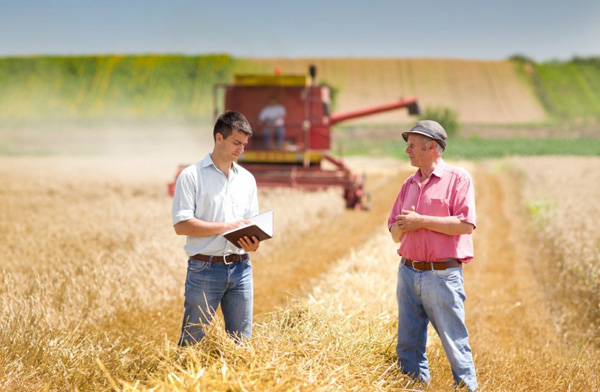 Верховна Рада підтримала закон щодо стимулювання фермерських господарств
