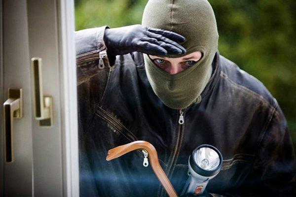На Дніпропетровщині затримали групу серійних крадіїв-іноземців