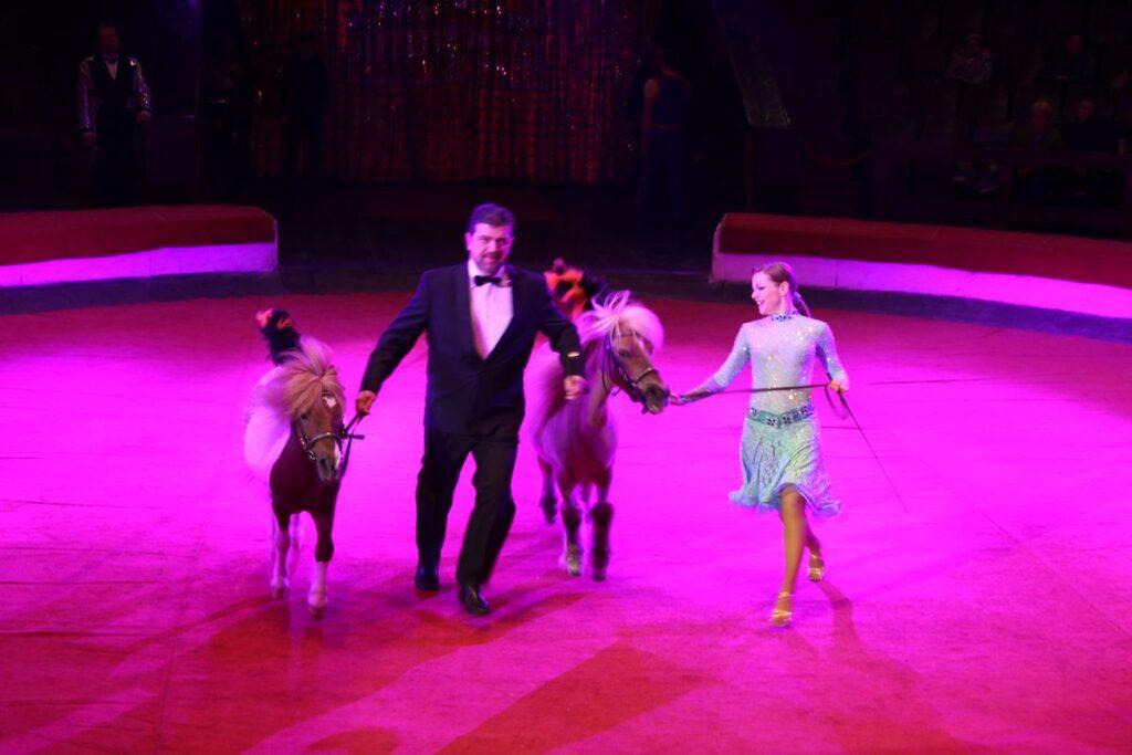 Пони в Днепровском цирке
