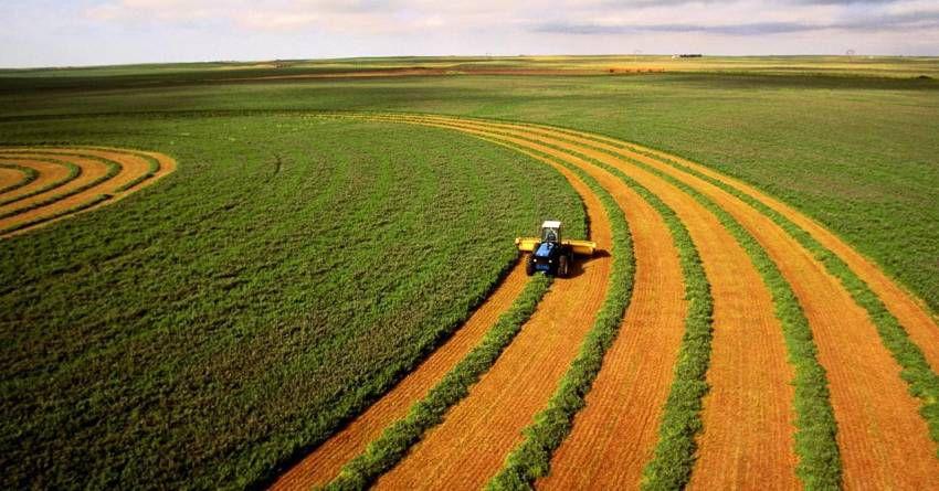 Що думають українці про запровадження ринку землі?