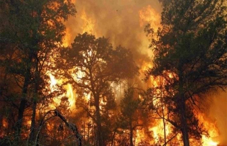 5 травня по Україні очікується надзвичайний рівень пожежної небезпеки