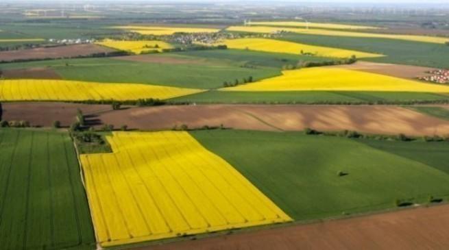На Дніпропетровщині уклали 868 договорів про продаж земельних ділянок